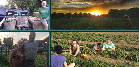 Serve it Forward at Rushmore Farm