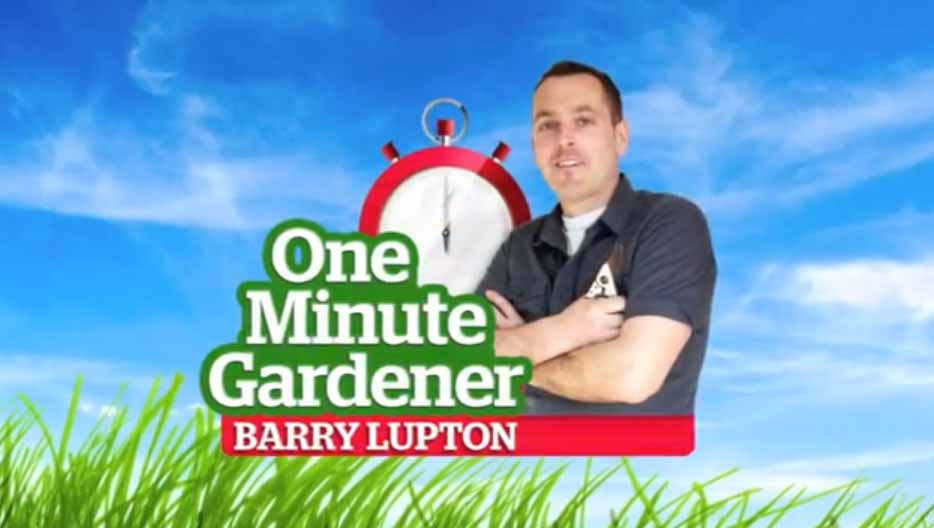 poster for one minute gardener