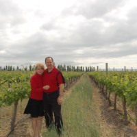 Andeluna Vineyard and Winery - Uco Valley, Mendoza, Argentina