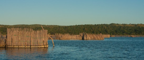 Fish Traps in Kosi Bay, KZN, South Africa