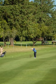 Player Takes a Divot on His Final Approach Shot