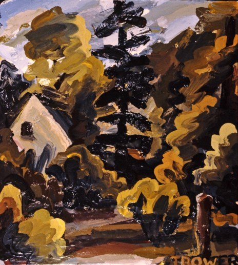 Our Backyard, Autumn, by Barry Trower (1982).