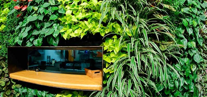 pelayo bar jardin