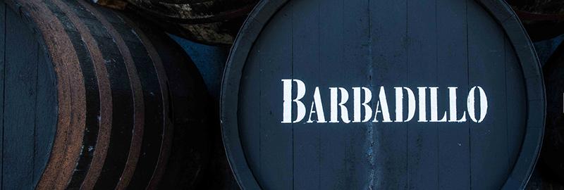 vinos barbadillo barril