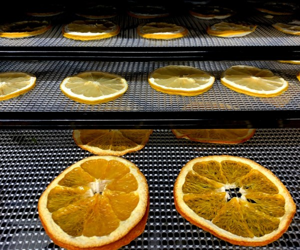 Why Every Bar Needs A Dehydrator.