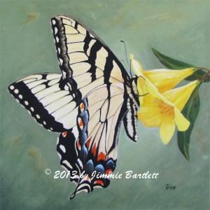 ButterflyOnJasmineJimmieBartlettWEB