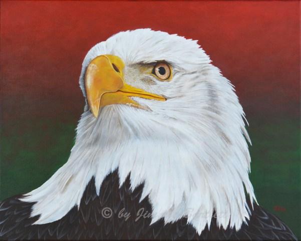 American Eagle WEB2 DSC_7095