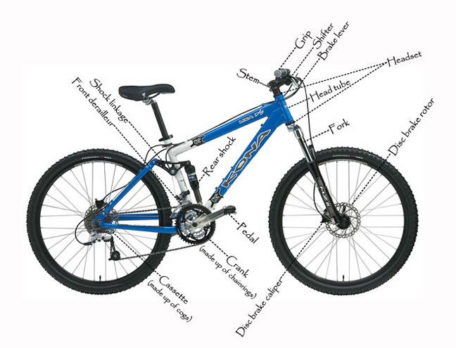 Barton Haynes San Diego CA Bicycle