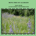 Being Free allergies CD FRONT