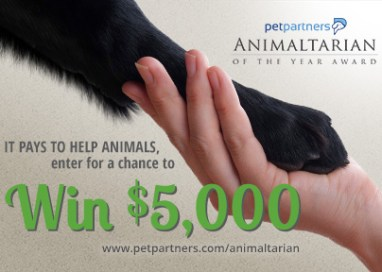 $5,000 on the line to crown the Animaltarian of the Year