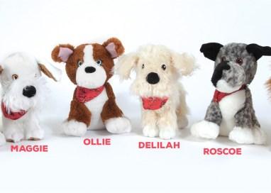 Review: MuttNation™ Dog Products by Petmate and Miranda Lambert