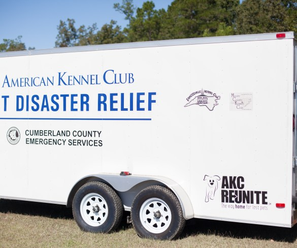 AKC Reunite helps reunite pets and their owners after Hurricane Matthew