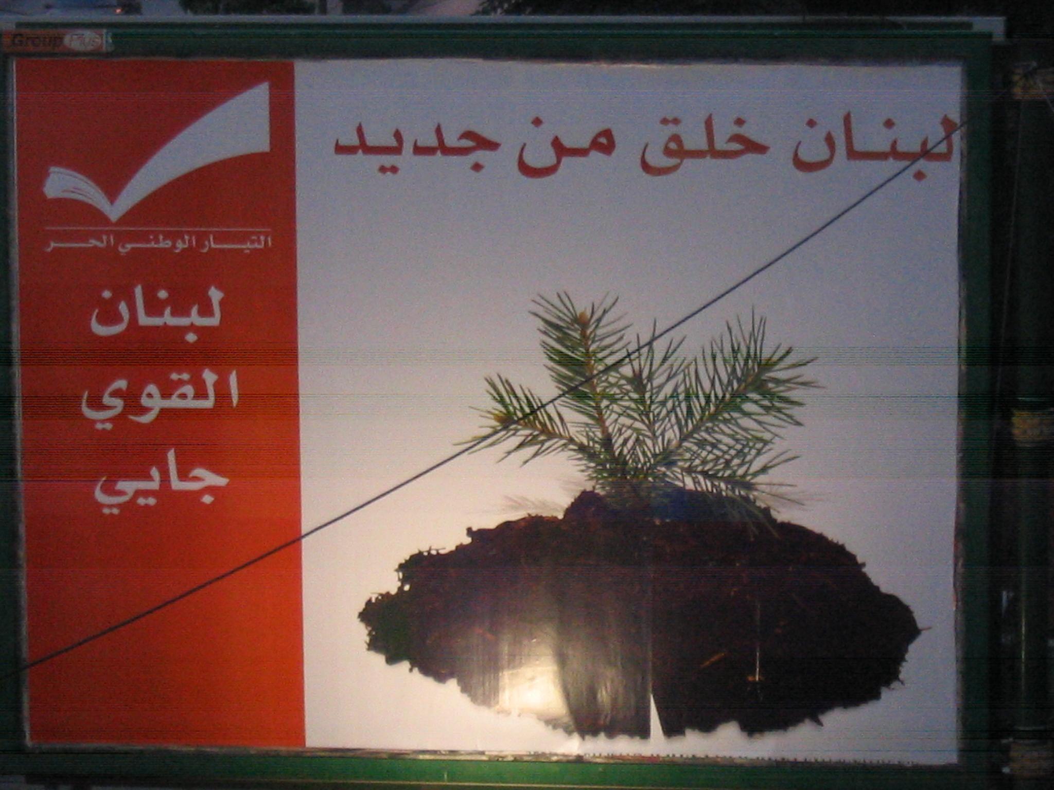 Foto di Valentina Perniciaro _Beirut settembre 2006: Il cedro in crescita, manifesti per la ricostruzione