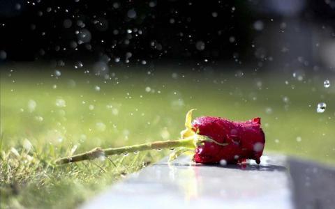 romantisme hujan