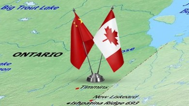 Photo of China invests in the manufacture of basalt insulation in Canada