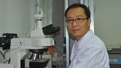 Photo of СРБИ «СоюзБазальт» приглашает на встречу c профессором Пенг Ченг Ма