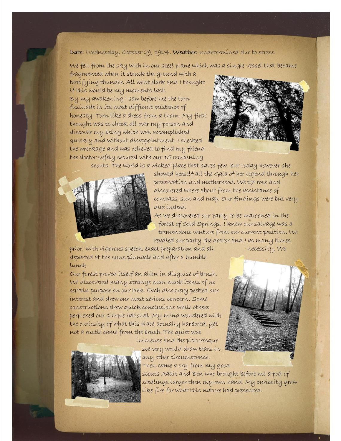 Cold springs journal entry pg 1