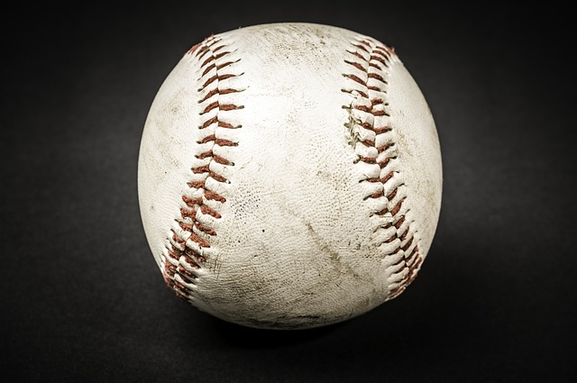 57e1d14a4e5baf14f6da8c7dda793278143fdef8525476487d2979d5954e 640 - Baseball Tips And Advice For The Beginner