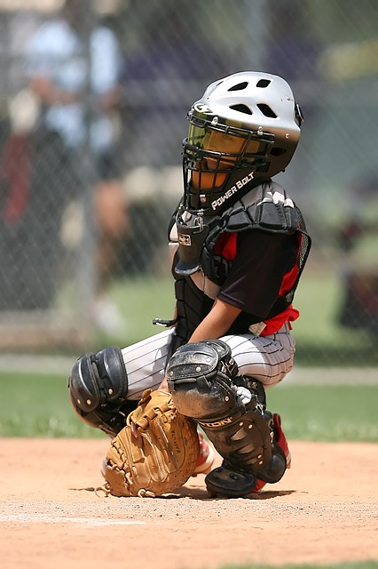 baseball have you stumped read these tips and ideas 2 - Baseball Have You Stumped? Read These Tips And Ideas