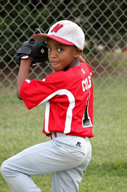 want to know about baseball read this 1 - Want To Know About Baseball? Read This