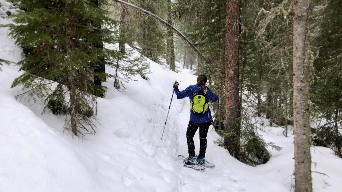 Snowshoeing during the Great Blizzard of 2021