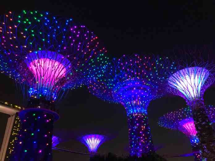 Supertrees in the Garden By The Bay in Singapore