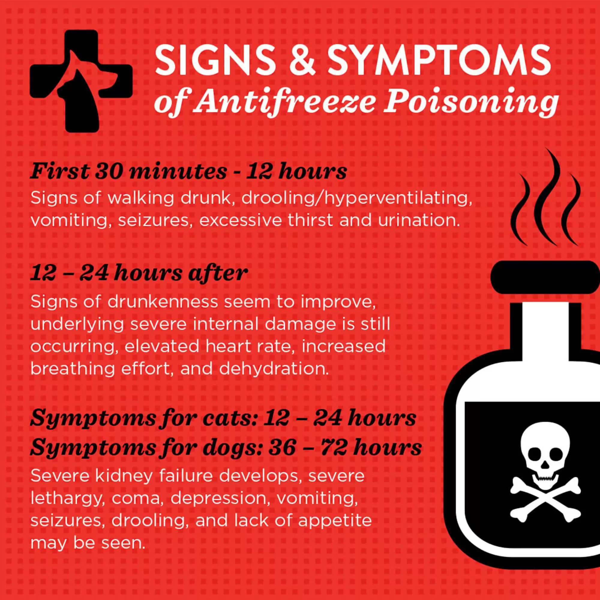 A graphic with signs and symptoms of antifreeze poisoning used on social media for the Emergency Pet Clinic of Temecula