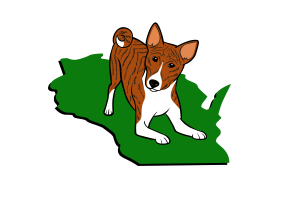 Basenji Club of Southeastern Wisconsin Brindle