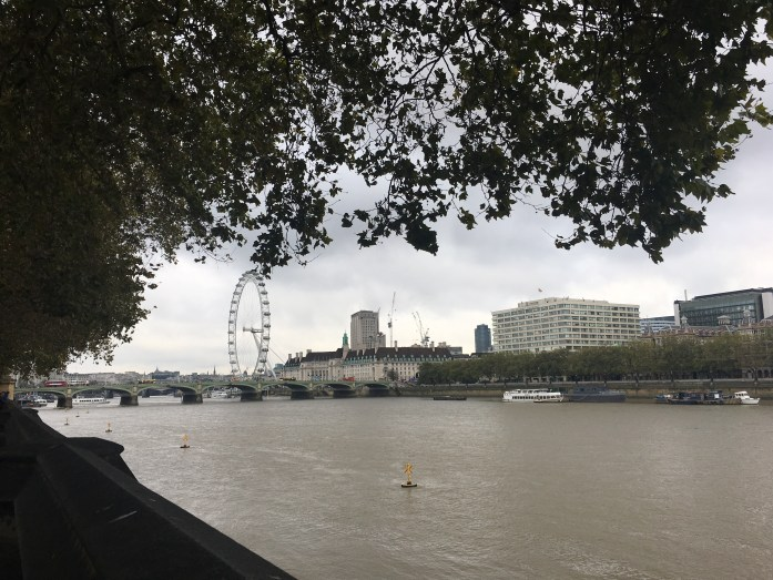 London Eye from the Thames