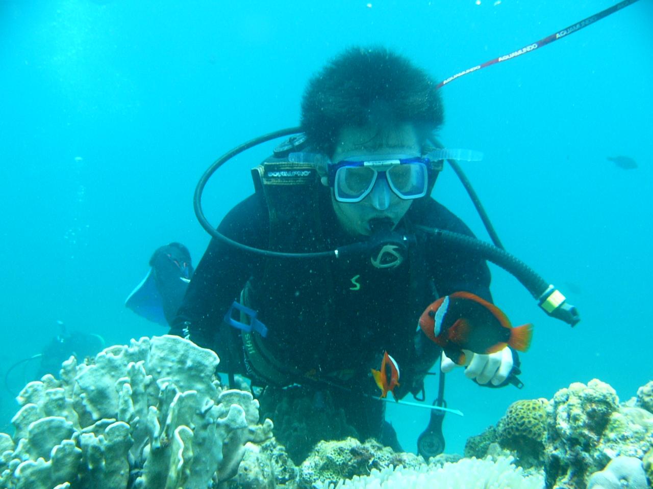每月限定一名!!來學英文八週!!!可免費參加潛水活動及得到潛水執照喔!! - 讓你所學的英文運用在正確的方法上 ...