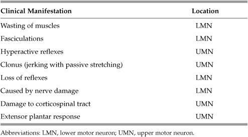 NEUROPATHOLOGY | Basicmedical Key