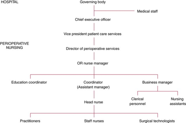 Administration Of Perioperative Patient Care Services