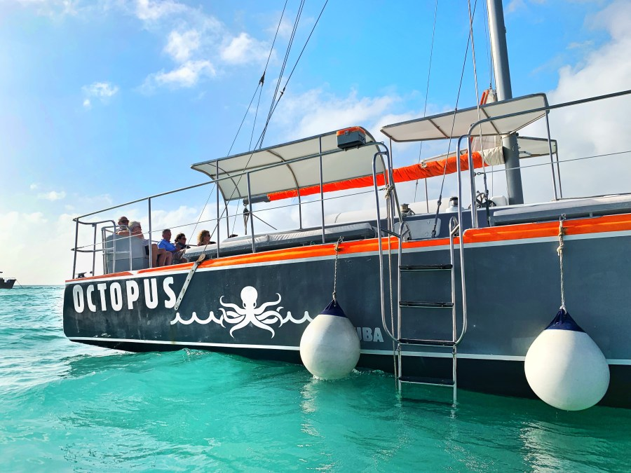 Picture of Octopus Aruba sail boat in the water