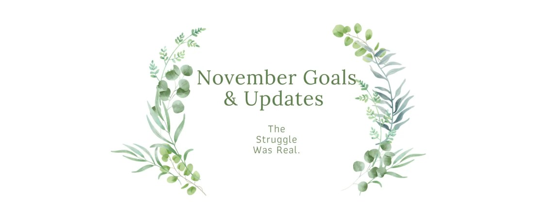 November Goals & Updates - The Struggle Was Real.