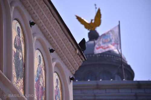 Vulturul Patriarhal - Foto comunicat