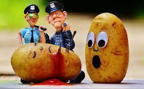 aardappelrepubliek