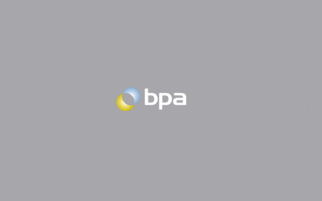 IT Review for the British Pipeline Agency