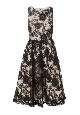 alice olivia seraphina lace dress 8100