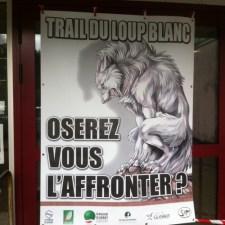 affiche trail loup blanc