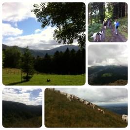 WE rando en Auvergne