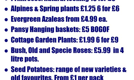 Spring 2016 Prices