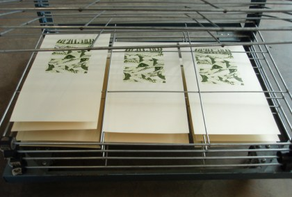 broadsides on drying rack