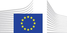 """Agenda digitale: una nuova strategia per stimolare la produttività delle imprese e della pubblica amministrazione europee attraverso """"la nuvola informatica"""" (cloud computing)"""