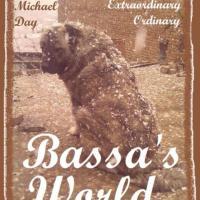Bassa's World