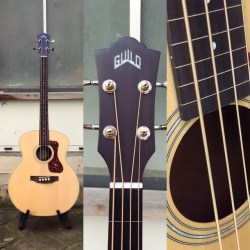 Guild B-240EF Acoustique Fretless