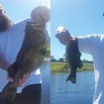Stick Marsh Bass Fishing with Capt John Leech