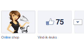 facebook tabs webvrouw