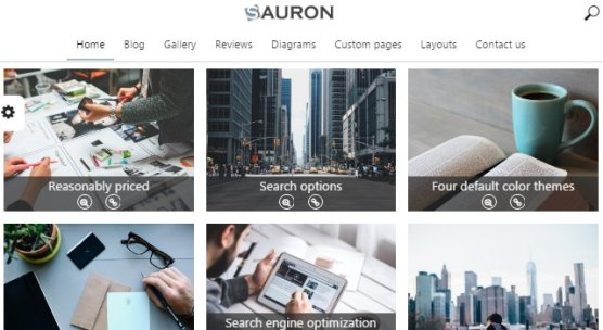 Sauron WordPress theme basic layout and features