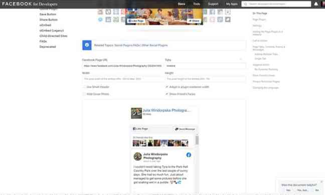 Social Media Feed from Facebook for developers interface