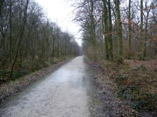 Und noch mehr durch den Wald